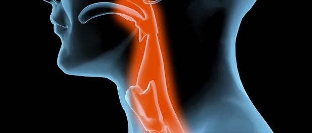 Ожог слизистой горла