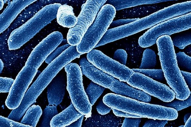 Мирамистин уничтожает микроорганизмы